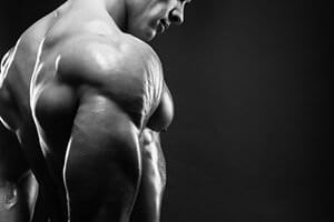 Best Muscle Building Supplements: Resources
